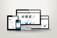 nicolondon-responsive-ecommerce-platform